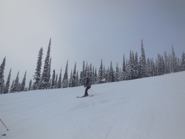 Skiing the slopes