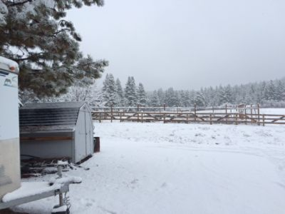 Pasture & Buildings at Ranch